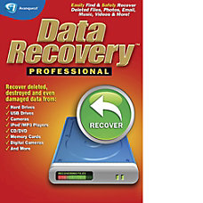 Data Recovery Professional Download Version