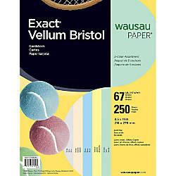 Exact Vellum Bristol Cover Stock 8