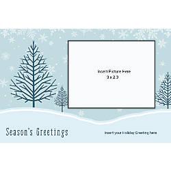 Photo Greeting Card Blue With Cardinal
