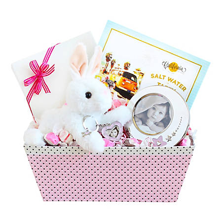 Givens and Company Welcome Baby Bunny And Picture Frame Gift Set, Girl
