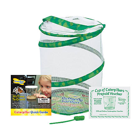 Insect Lore Butterfly Growing Kit, Green