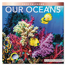 Mead Our Oceans Monthly Wall Calendar