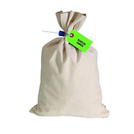 """Control Group Canvas Coin Bags, 12"""" x 19"""", Tan, Pack Of 50 Bags"""