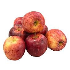 National Brand Fresh Gala Apples Pack