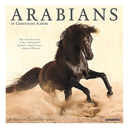 "Willow Creek Press Animals Monthly Wall Calendar, 12"" x 12"", Arabians, January To December 2020"