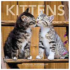 Landmark Kittens Monthly Wall Calendar 12