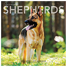 Landmark German Shepherds Monthly Wall Calendar