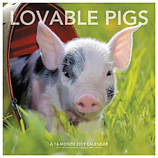 Landmark Lovable Pigs Monthly Wall Calendar