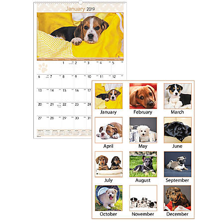 "AT-A-GLANCE® Puppies Monthly Wall Calendar, 15 1/2"" x 22 3/4"", January to December 2019"