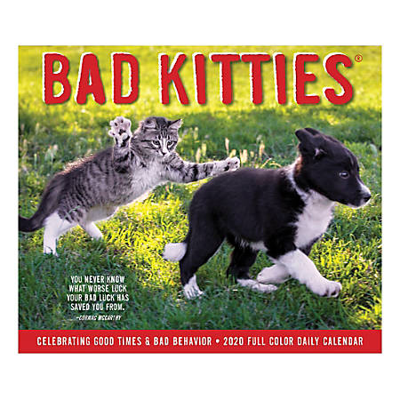 "Willow Creek Press Page-A-Day Daily Desk Calendar, 5-1/2"" x 6-1/4"", Bad Kitties, January to December 2020, 08737"