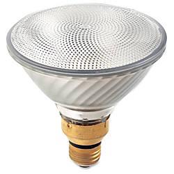 Satco PAR38 Halogen 60 Watt Bulb