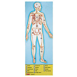 Melissa Doug Human Body 100 Piece