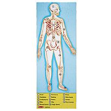 Melissa Doug Human Body 100 Piece