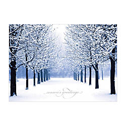 Personalized Winter Scene Holiday Cards 7