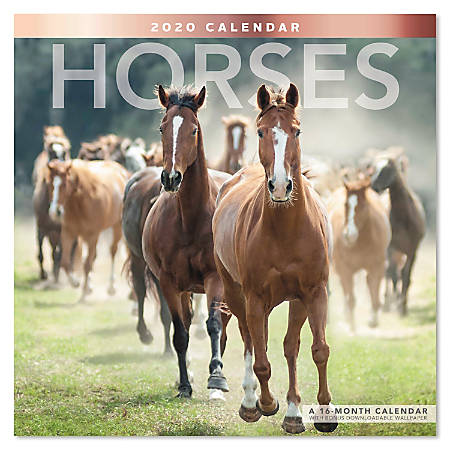 """Mead® Horses Monthly Wall Calendar, 12"""" x 12"""", January to December 2020, ODE159-10"""