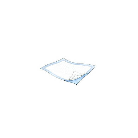 "Durasorb™ Underpads, 23"" x 36"", Light Blue, Case Of 150"