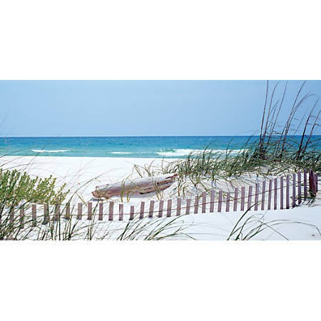 "Biggies Wall Mural, 40"" x 80"", Carolina Coast"