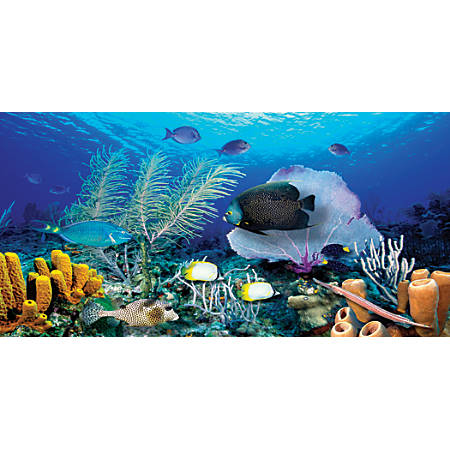 "Biggies Wall Mural, 60"" x 120"", Ocean Reef"