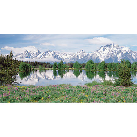 "Biggies Wall Mural, 60"" x 120"", Mountain Flower"