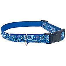 Executive Pup Dog Collar MediumLarge Blue