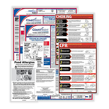 ComplyRight Federal/State Labor Law And Restaurant Poster Kit, English, Texas
