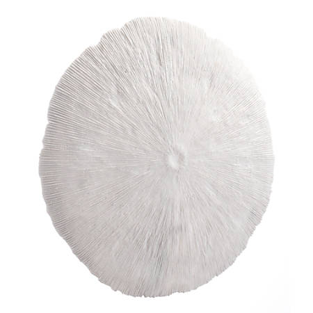 Zuo Modern Round Coral Plaque, Large, White