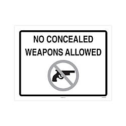 ComplyRight Federal Specialty Posters English No Concealed