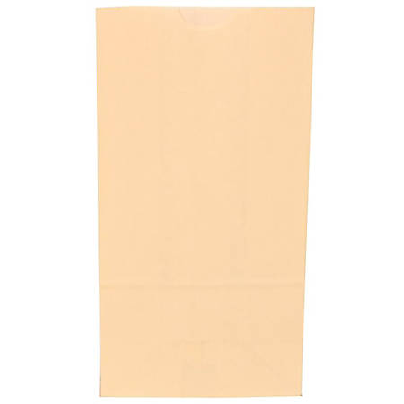 "JAM Paper® Medium Kraft Lunch Bags, 9-3/4""H x 5""W x 3""D, Ivory, Pack Of 500 Bags"