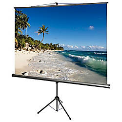 AccuScreens 800069 Manual Projection Screen 71