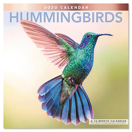 """Mead® Hummingbirds Monthly Wall Calendar, 12"""" x 12"""", January To December 2020, ODE20210"""