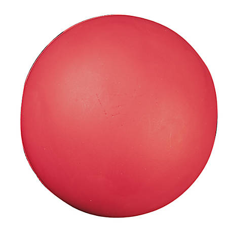"Champion Sports Coated Foam Ball, 4"", Red"