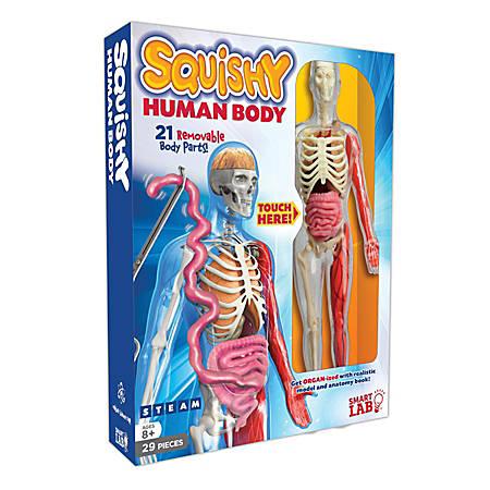 SmartLab QPG Lab For Kids, Squishy Human Body, Grade 3 - 8