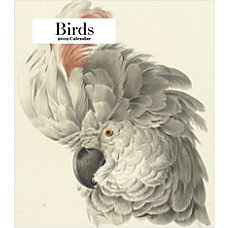 Retrospect Monthly Desk Calendar Birds 6