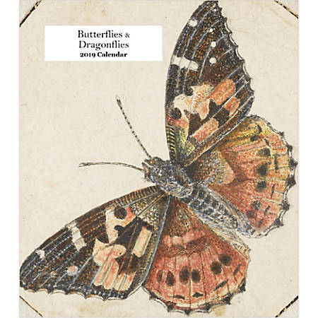 "Retrospect Monthly Desk Calendar, Butterflies And Dragonflies, 6-1/4"" x 5-1/4"", Multicolor, January to December 2019"