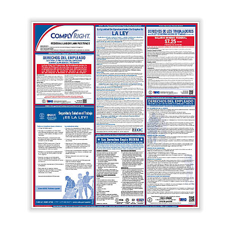"ComplyRight™ Spanish Federal Labor Law Poster, 32 3/4"" x 24"""