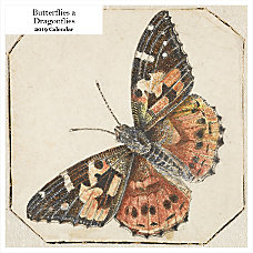 Retrospect Square Monthly Wall Calendar Butterflies