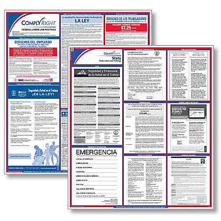 "ComplyRight™ Texas Federal/State Labor Law Spanish Poster Kit, 24"" x 24"""