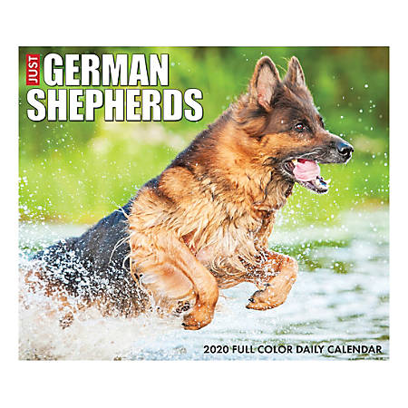 """Willow Creek Press Page-A-Day Daily Desk Calendar, 5-1/2"""" x 6-1/4"""", Just German Shepherds, January to December 2020, 08867"""