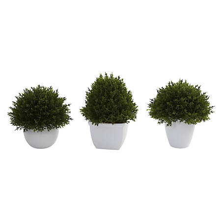 "Nearly Neutral 4-1/2""H Plastic Mixed Cedar Topiaries With Vases, Green/White, Set Of 3 Topiaries"