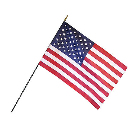 """Annin and Company Empire Brand U.S. Classroom Flag, 12"""" x 18"""", Grades Pre-K - 12"""