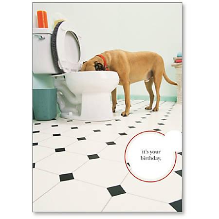 "Viabella Fun Birthday Greeting Card With Envelope, Toilet Dog, 5"" x 7"""