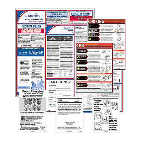 ComplyRight Federal/State Labor Law And Restaurant Poster Kit, English, Massachusetts