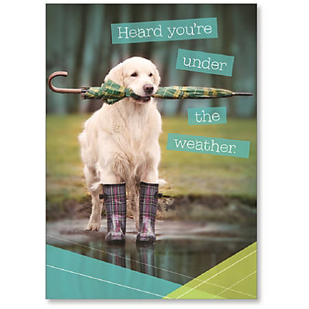"""Viabella Get Well Greeting Card, Dog, 5"""" x 7"""", Multicolor"""