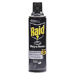 Raid WaspHornet Killer Spray Spray Kills