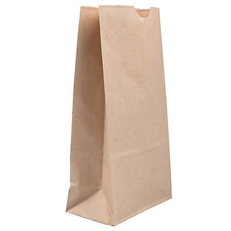 JAM Paper® Medium Kraft Lunch Bags, Brown, 5 x 9 3/4 x 3, Pack Of 25 Bags