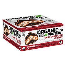 Skout Backcountry Dark Chocolate Cherry Protein
