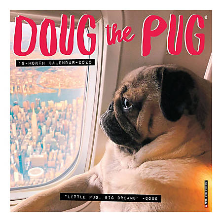 With over 13 million followers across his social media and well over 1 Billion Facebook video views, Doug The Pug is one of the world's most famous and most followed dogs.