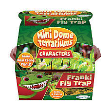DuneCraft Franki Fly Trap Mini Terrarium