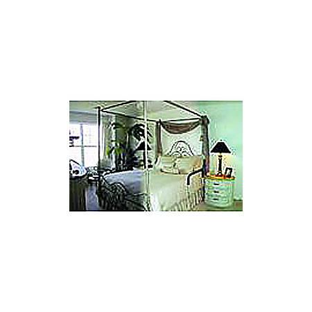Adjustable Bedside Assistant® Bed Rail