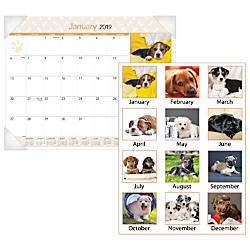 AT A GLANCE Puppies Desk Pad